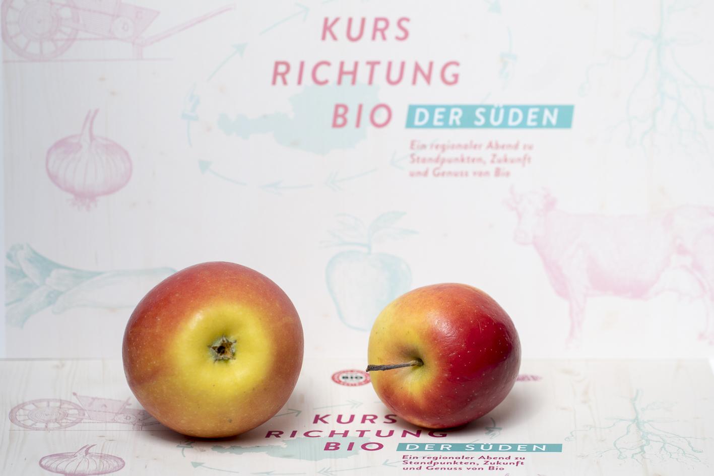 Kurs Richtung Bio Der Süden, Verkostung, Bio-Apfel Kanzi und Rockit